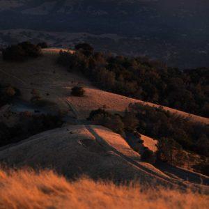 View from Mt Diablo looking at Summit Wealth in Danville, CA